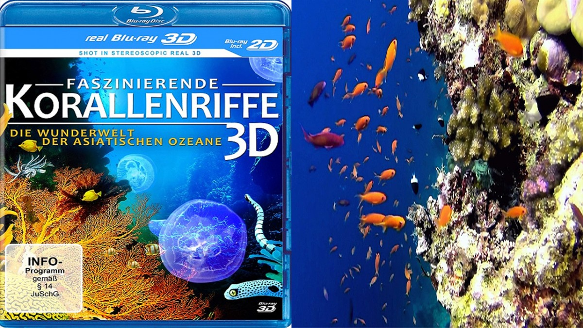 Coral triangle 3D movie edited by Stephan Stahl
