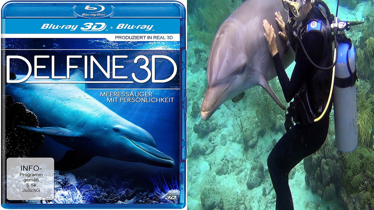 Dolphins 3D movie edited by Stephan Stahl