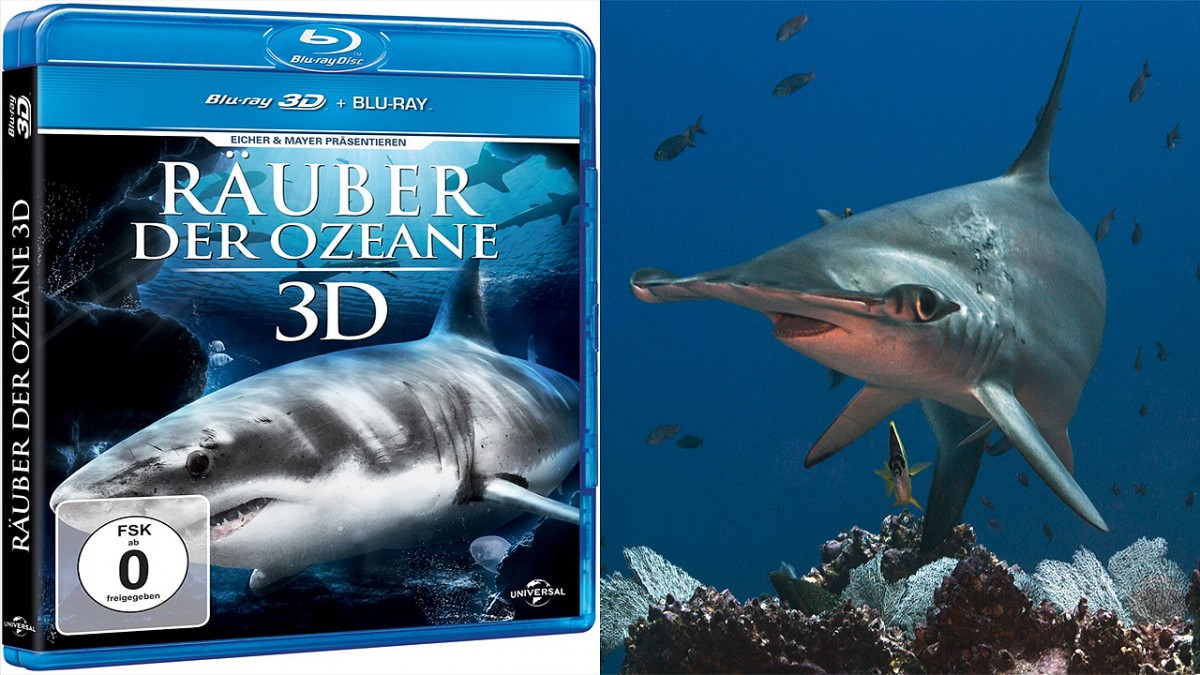 Sharks 3D movie shoot mainly by Stephan Stahl